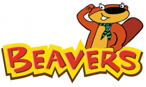 Beaver-Image